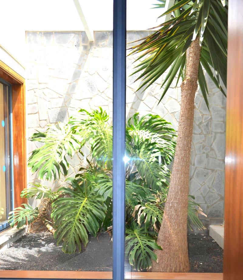 internal-garden